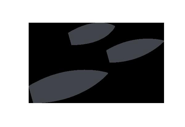 icon-fleet